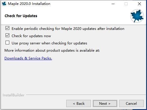 Maple2020破解版安装教程7