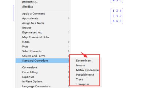 Maple2020破解版矩阵运算6
