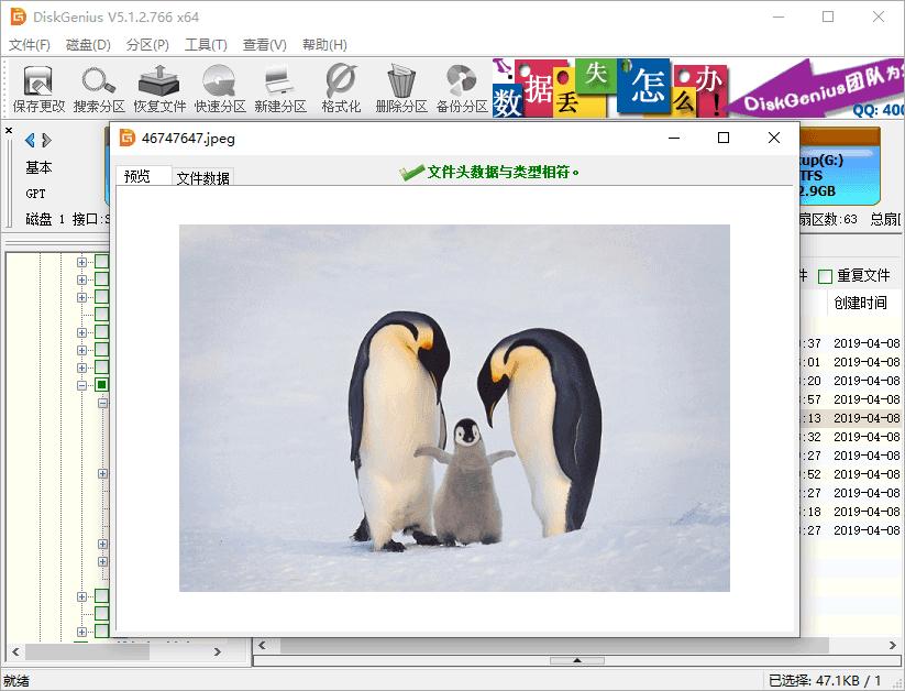 DiskGenius破解版恢复删除文件4
