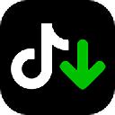 TikTok Downloader电脑版 v3.3.2 破解版