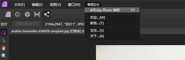 Affinity Photo电脑版使用方法15