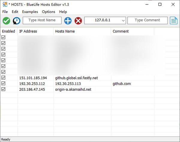 BlueLife Hosts Editor高级版