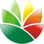 Logo设计软件(EximiousSoft Logo Designer) v3.90 免费版